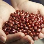 小豆カイロの作り方!糠や玄米でも出来るエコな冷え対策!
