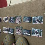 モンテッソーリ言語教育:動物の絵カード合わせ・後編